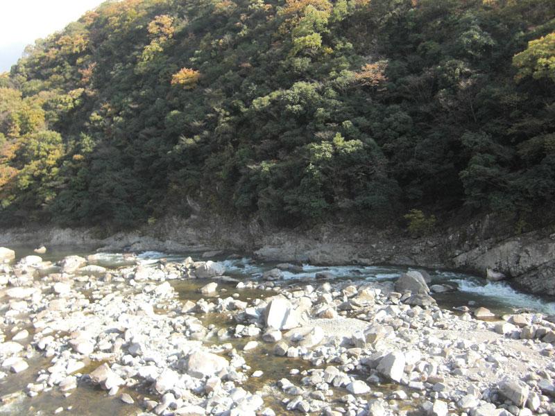 廃線敷内の川