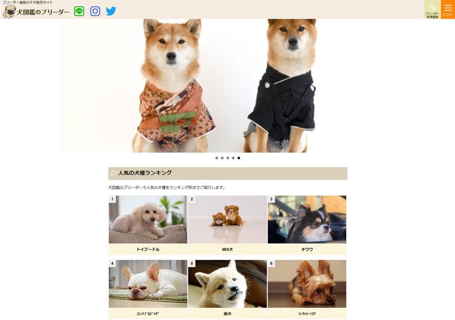 犬図鑑のブリーダー様サイト制作